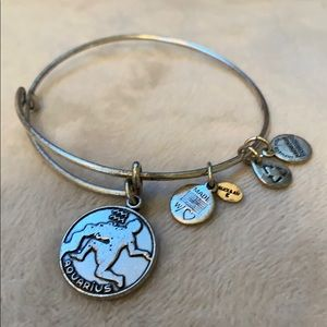 Alex and Ani Aquarius bracelet